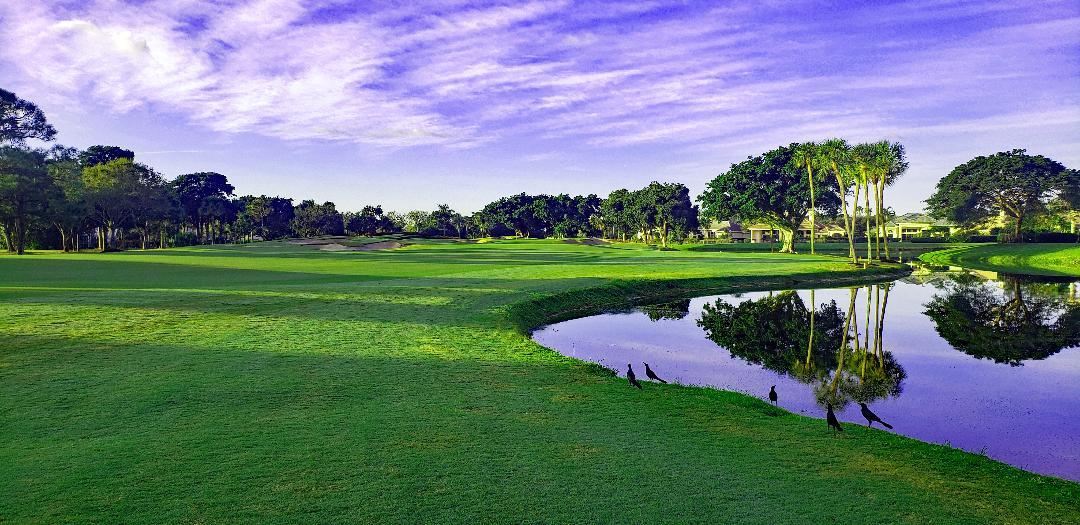 BallenIsles Country Club_The Golfin Guy_0
